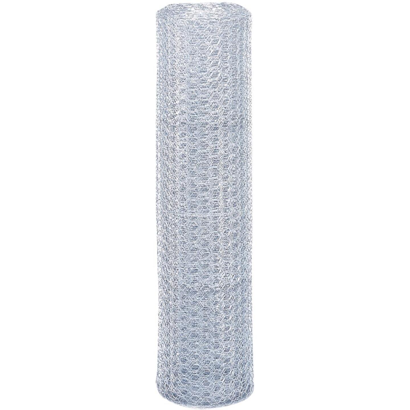 Do it 1 In. x 48 In. H. x 50 Ft. L. Hexagonal Wire Poultry Netting Image 3